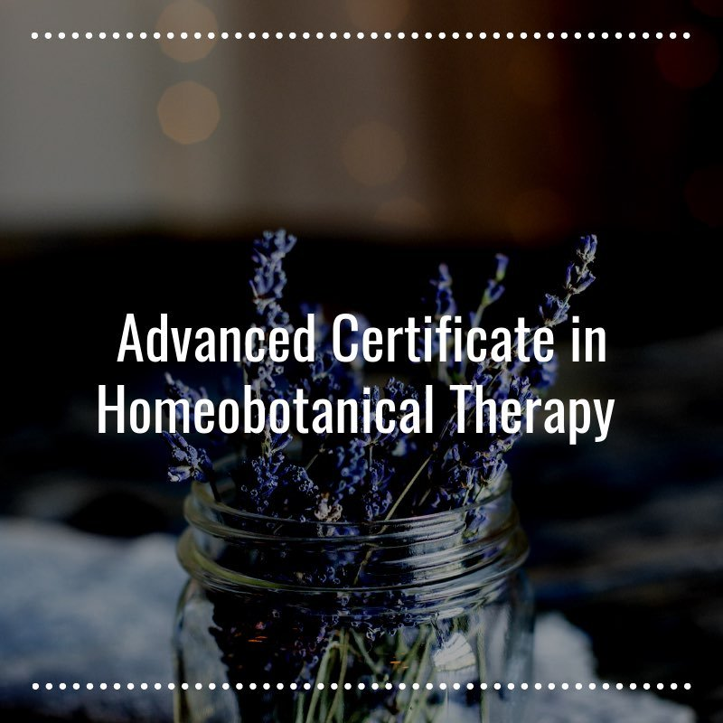 Advanced Certificate in Homeobotanical Therapy- Learn More- Homeobotanical Courses NZ- Herbal Energy Centre