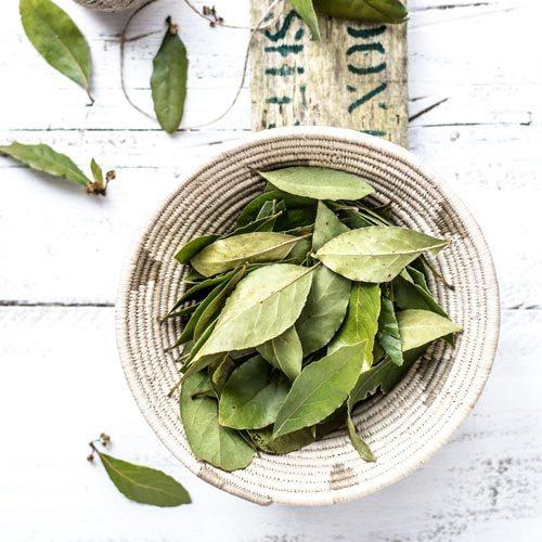Classic Herb | A - Z